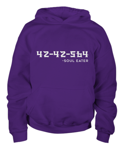 42-42-564 Youth Hoodie, Purple