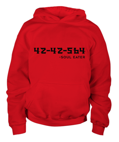 42-42-564 Youth Hoodie, Red