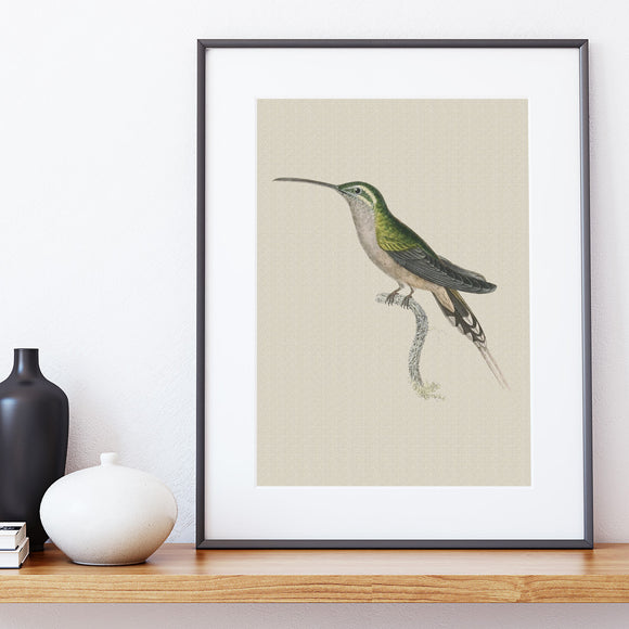 LINEN ART PRINT ~ Emerald Hummingbird
