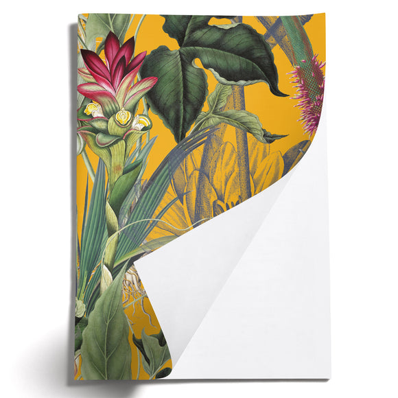 LOVELY LITTLE NOTEBOOKS [set of 2] ~ Lush