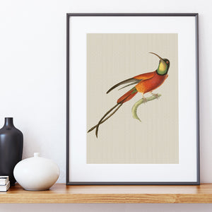 LINEN ART PRINT ~ Rust Hummingbird