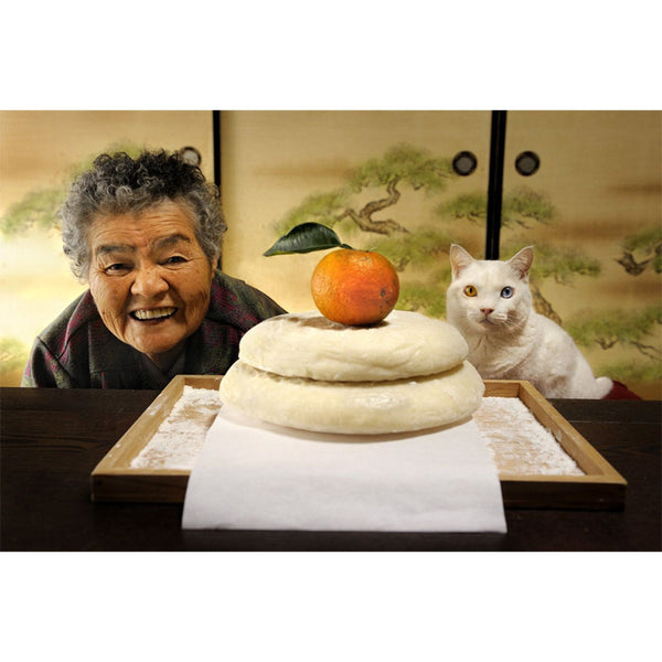 Miao the Big Mama and Fukumaru the Cat - Miyoko Ihara - Arnolfini Bookshop