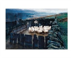 Keith Bowen - Penned Sheep|Keith Bowen - Yn y Gorlan