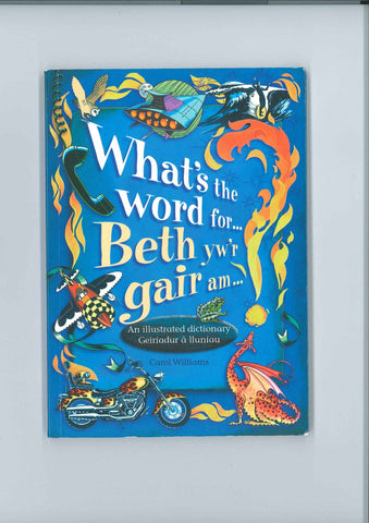What's the word for ...|Beth yw'r gair am ...