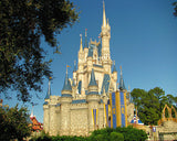 Fun And Exciting Walt Disney World Vacation