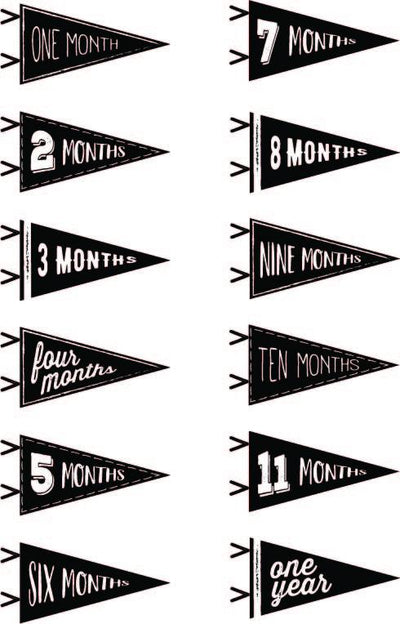 Vintage Pennant Monthly Milestone Cards