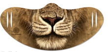 Load image into Gallery viewer, Cat Face Single Layer Mask