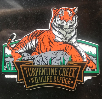 Tiger Drawing Magnet