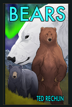 "Load image into Gallery viewer, ""Bears"" Hard Cover Graphic Novel"