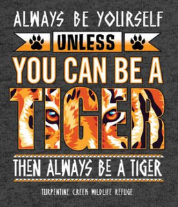 LAST CHANCE!!: You Can be A Tiger Youth Tee