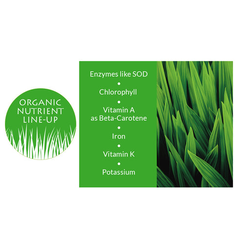 Wheatgrass Juice Powder, 5.3oz
