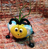 Tilla Critters Bumbly Bobby Bee One of a Kind Air Plant Creations from Chili Fiesta HandiWorks