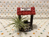 Tilla Critters Make a Wish One of a Kind Airplant Creations by Chili Fiesta Handiworks