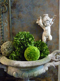Topiaries, Wreaths and Plants