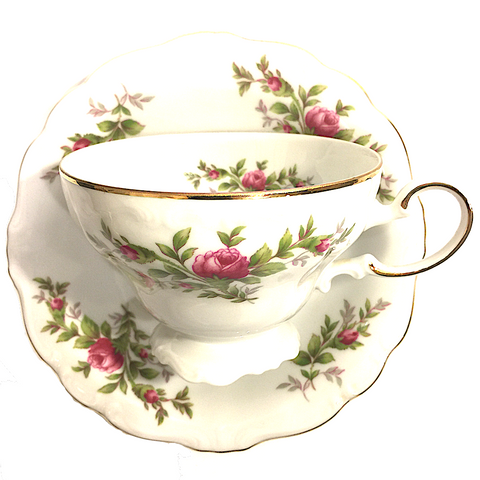 Johann Haviland China Tea Cup and Saucer Set