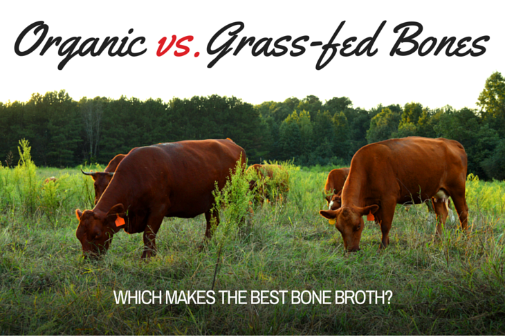 The pros and cons of using conventional vs. organic vs. grass-fed bones in bone broth