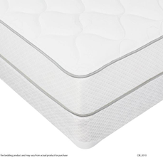 Baron Plush Twin Size Mattress and Boxspring