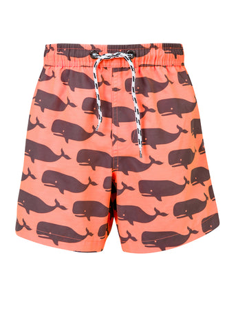 Whale Swim Trunks SnapperRock