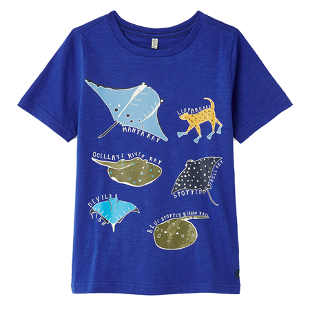 Ray Blue Fish Tee Joules