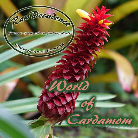 World of Cardamom