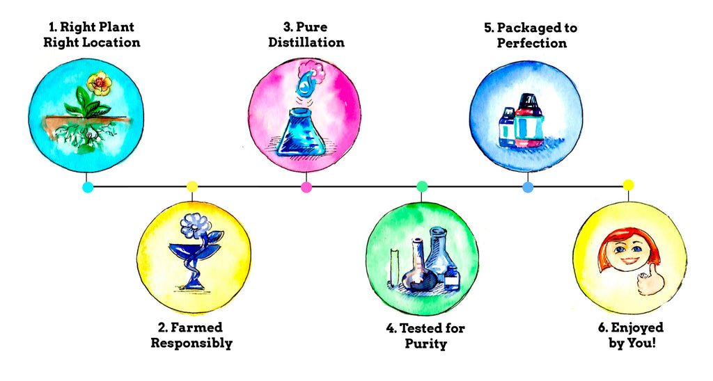 6 steps to essential oil purity