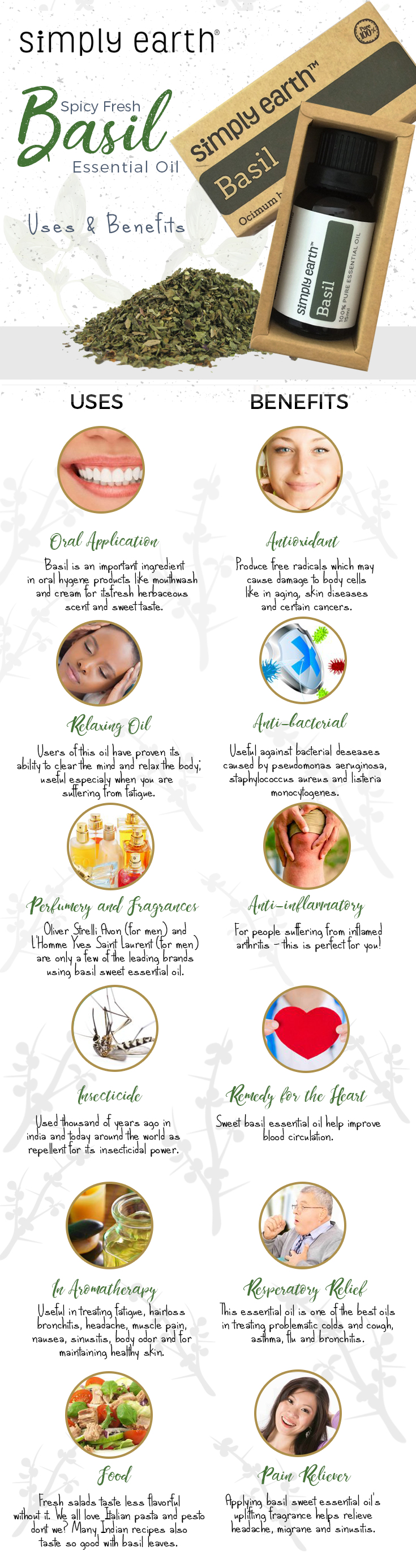 basil sweet essential oil uses and benefits infographic
