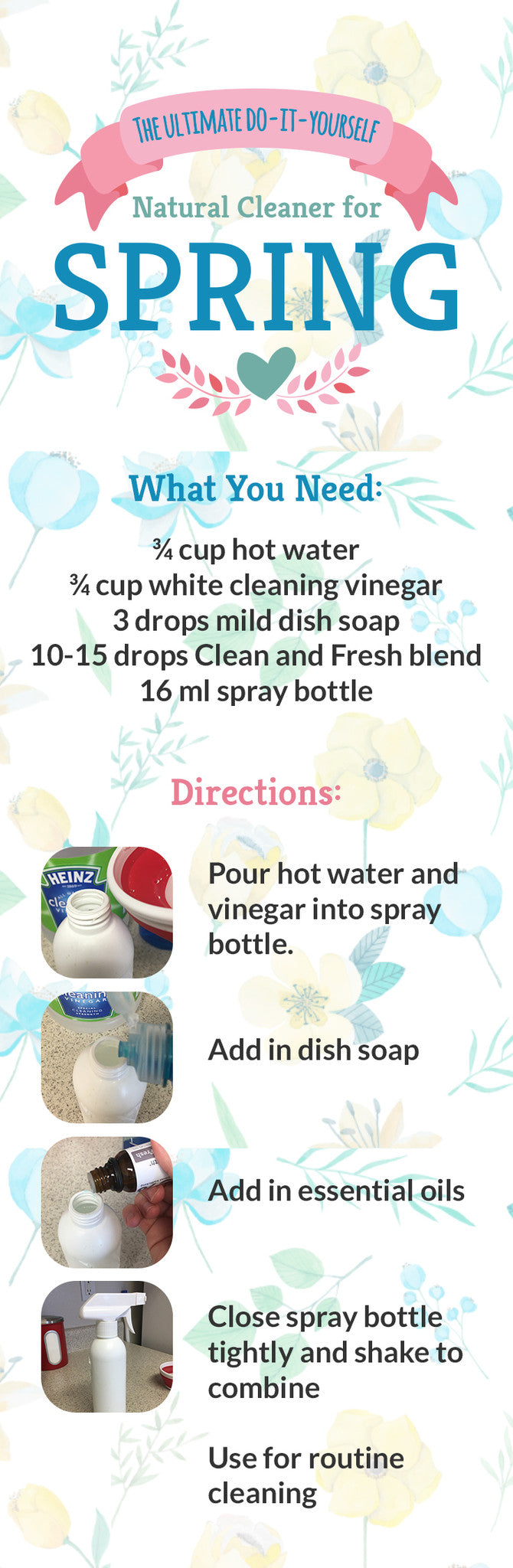 spring cleaning diy infographic