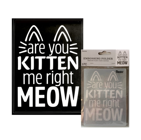 Are You Kitten Me Right Meow Embossing Folder By Cat Darice Craft Folders