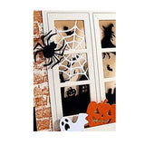 Spider And Web Die Cut Set by Impression Obsession Dies DIE115-J - Inspiration Station Scrapbook Store & Retreat
