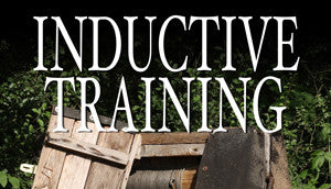 INDUCTIVE TRAINING LESSON-10 2016-11-10