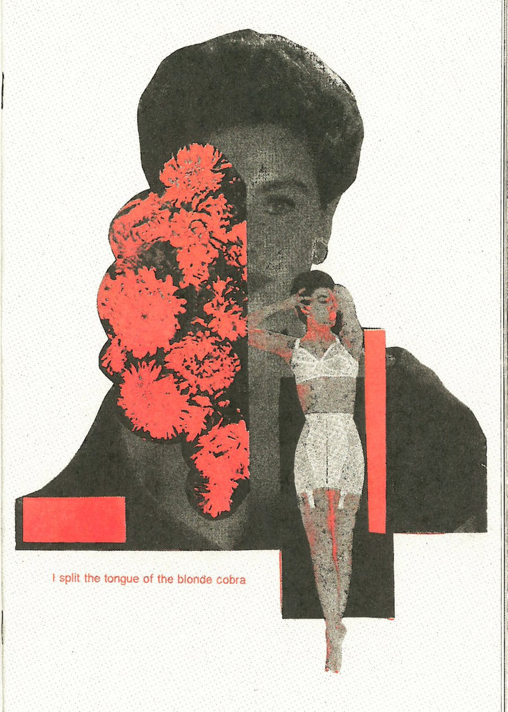 ALEXANDRA GUTNIK - I split the tongue of the blonde cobra ZINE