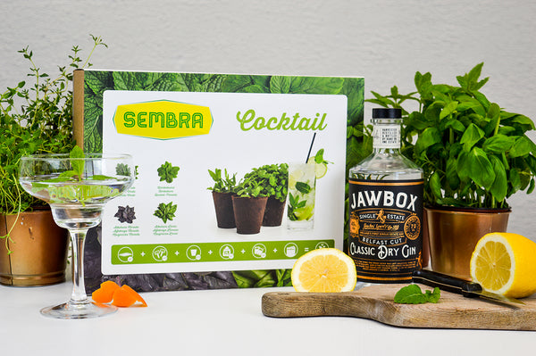 Traditional Garden Games Sembra Cocktail Kit sow your own herbs