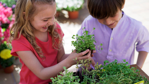 National Children's Gardening Week Grow more smiles with Sembra sow and grow your own kits