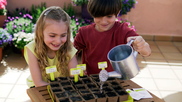 Give gardening a go with Sembra sow and grow your own kits