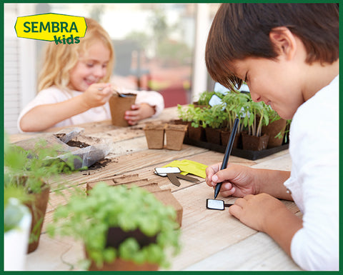 Traditional Garden Games Sembra sow and grow kits