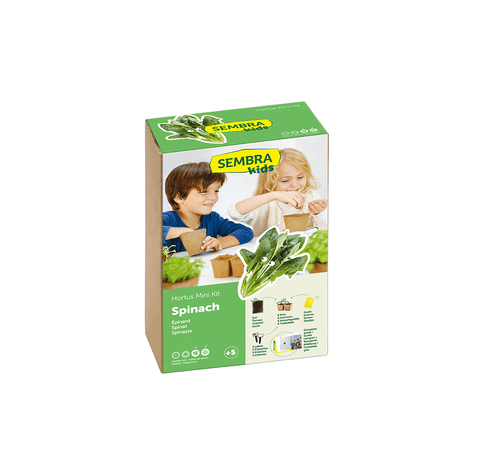 Traditional Garden Games Sembra Spinach Kit