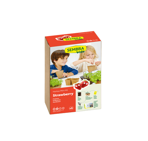Traditional Garden Games Sembra Strawberry Kit