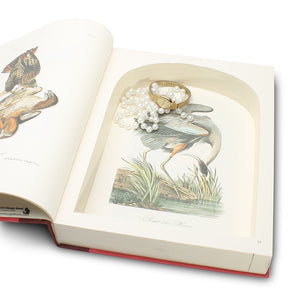 The Art of Audubon - XL Secret Storage Hollow Book - Secret Storage Books