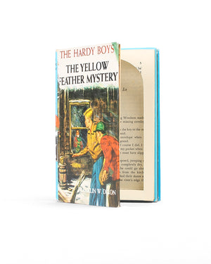Hardy Boys - Yellow Feather Mystery - Stack of TWO Book Safe - Secret Storage Books