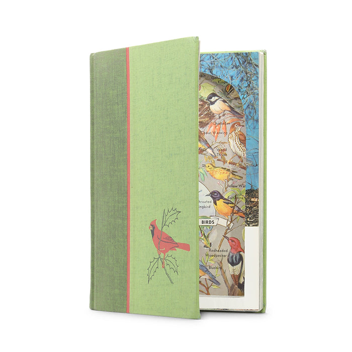 Song and Garden Birds - Vintage Hollow Book