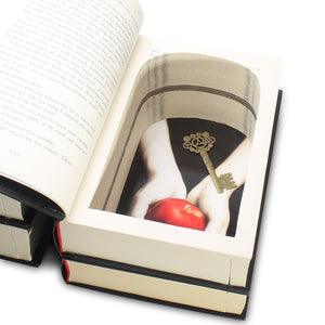 Twilight Series Book Safes - Set of 2 stacks - Secret Storage Books