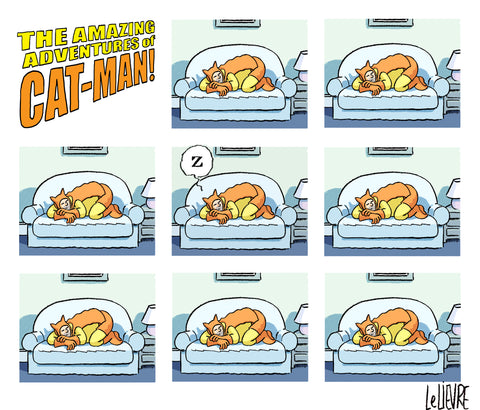 The amazing adventures of cat man