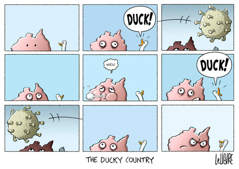 The ducky country