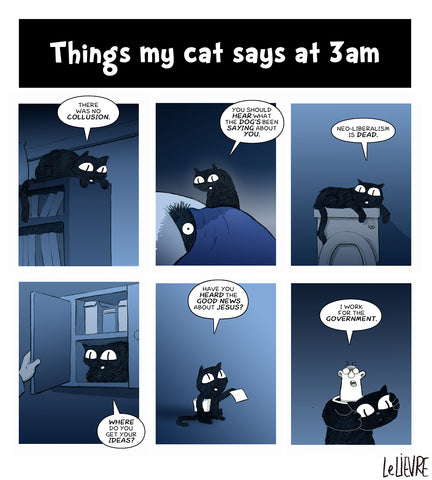 Things my cats says at 3AM