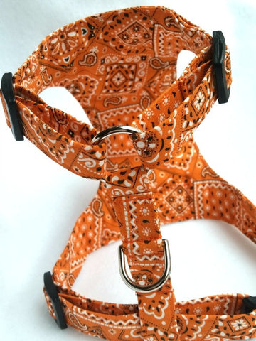 Sunset Bandanas Harness