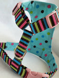 Rainbow Polka Dots Harness