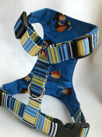 Marco Polo Harness