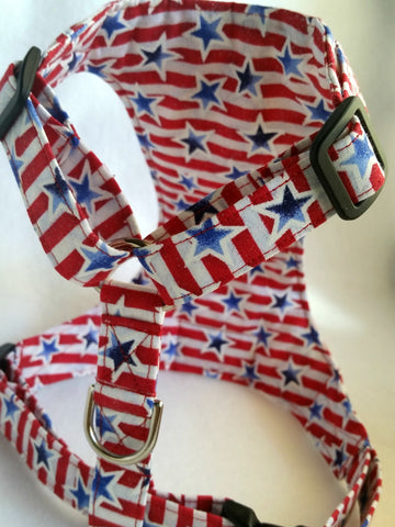 4th of July Celebration Harness