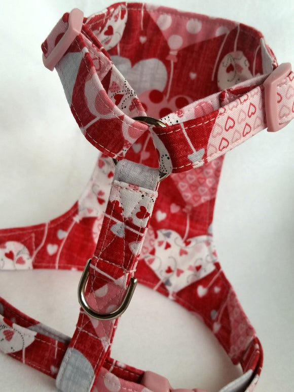 Dear Heart Balloon  Harness