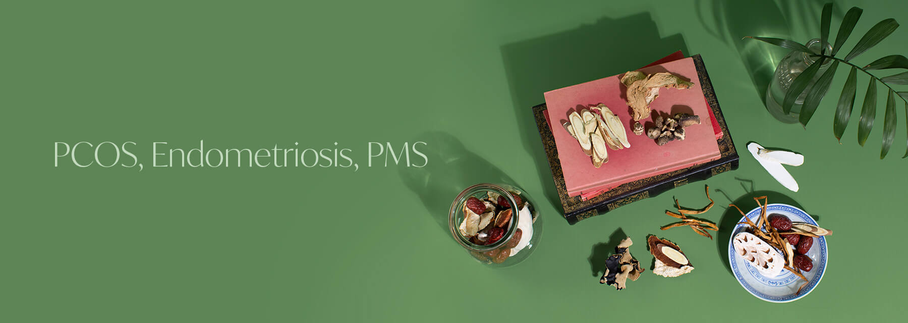 PCOS, Endometriosis and PMS